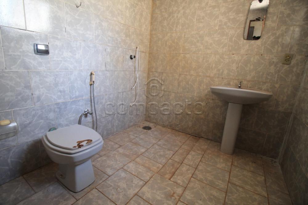 Alugar Casa / Padrão em São José do Rio Preto apenas R$ 1.200,00 - Foto 13