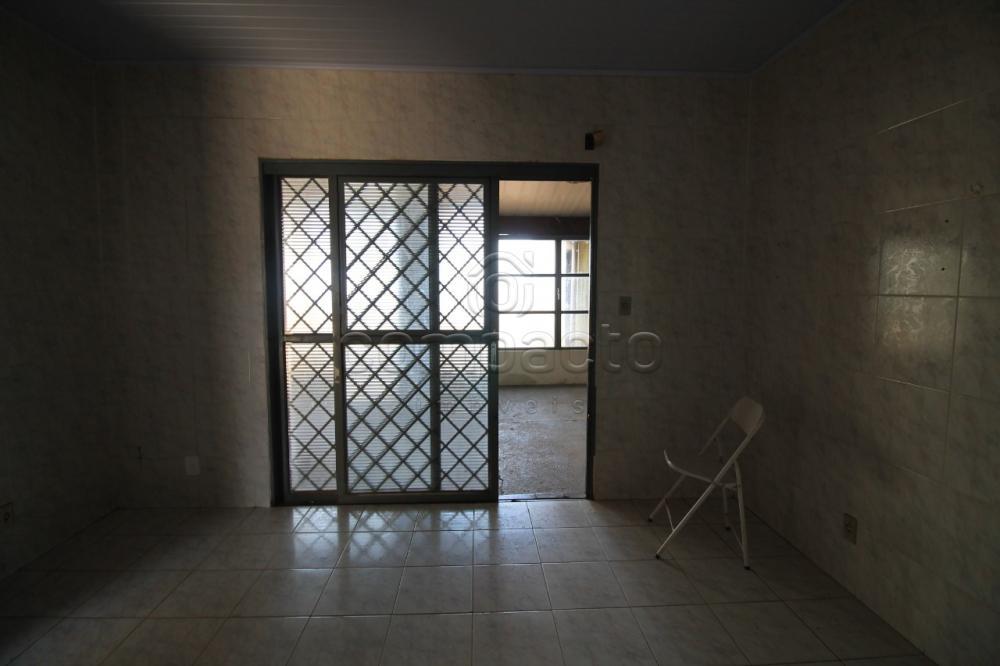 Alugar Casa / Padrão em São José do Rio Preto apenas R$ 1.200,00 - Foto 18