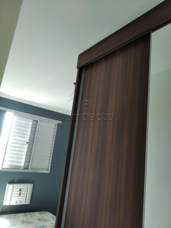 Alugar Apartamento / Padrão em São José do Rio Preto apenas R$ 650,00 - Foto 2