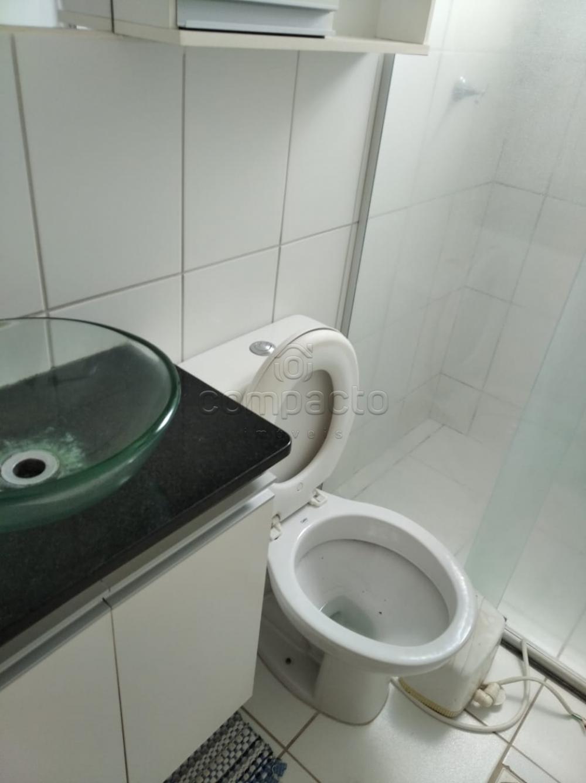 Alugar Apartamento / Padrão em São José do Rio Preto apenas R$ 650,00 - Foto 4