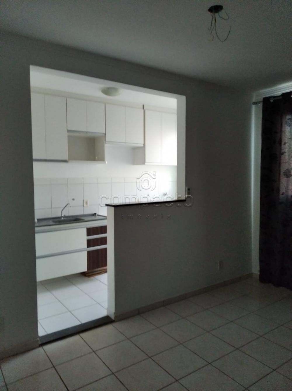 Alugar Apartamento / Padrão em São José do Rio Preto apenas R$ 650,00 - Foto 6