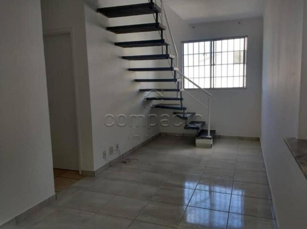 Alugar Apartamento / Cobertura em São José do Rio Preto apenas R$ 1.400,00 - Foto 1