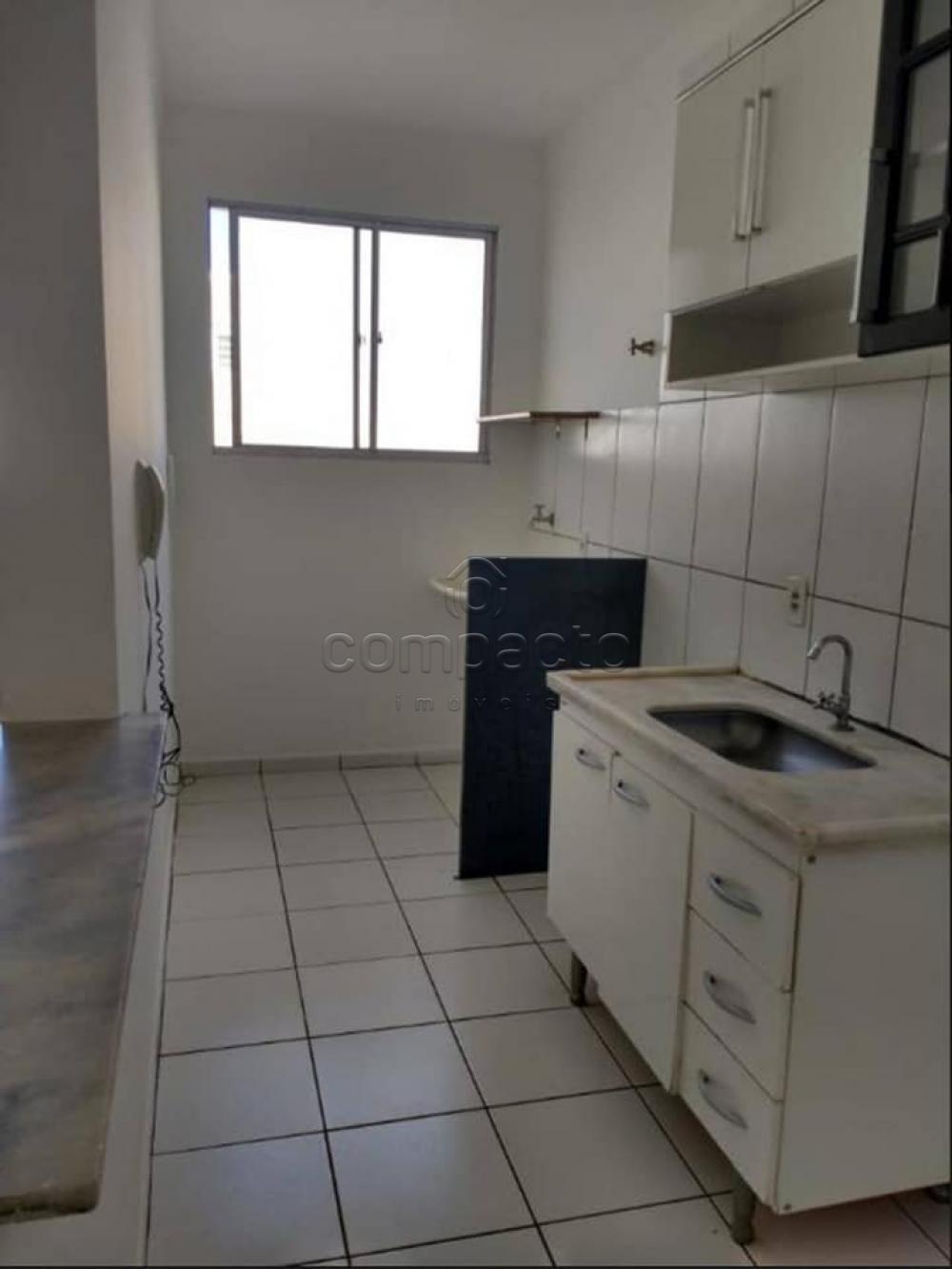 Alugar Apartamento / Cobertura em São José do Rio Preto apenas R$ 1.400,00 - Foto 3