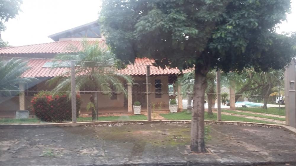 Comprar Rural / Chácara em Neves Paulista apenas R$ 900.000,00 - Foto 8