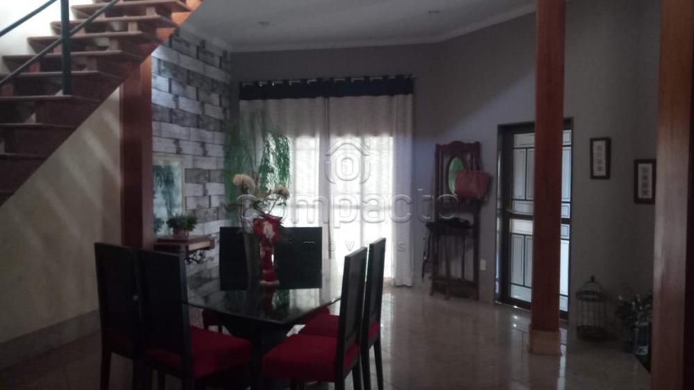 Comprar Rural / Chácara em Neves Paulista apenas R$ 900.000,00 - Foto 11