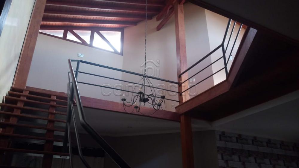 Comprar Rural / Chácara em Neves Paulista apenas R$ 900.000,00 - Foto 13