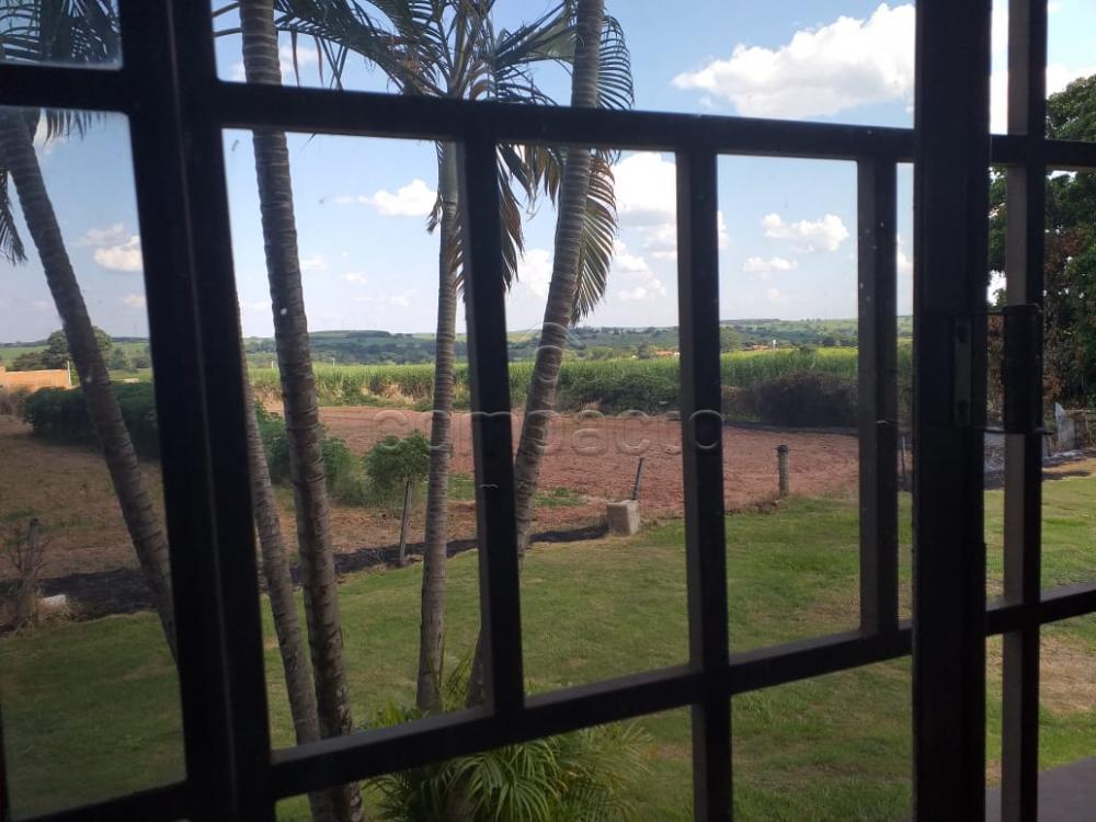 Comprar Rural / Chácara em Neves Paulista apenas R$ 900.000,00 - Foto 14