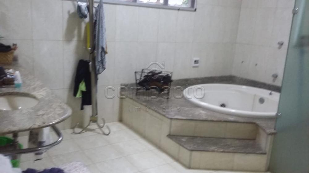 Comprar Rural / Chácara em Neves Paulista apenas R$ 900.000,00 - Foto 17