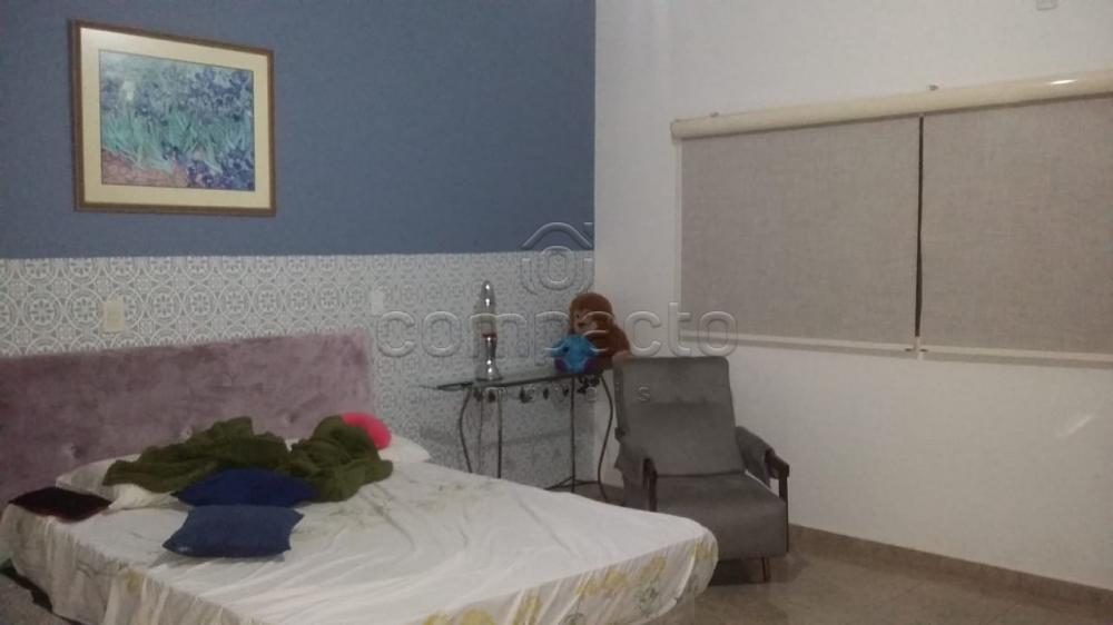 Comprar Rural / Chácara em Neves Paulista apenas R$ 900.000,00 - Foto 18