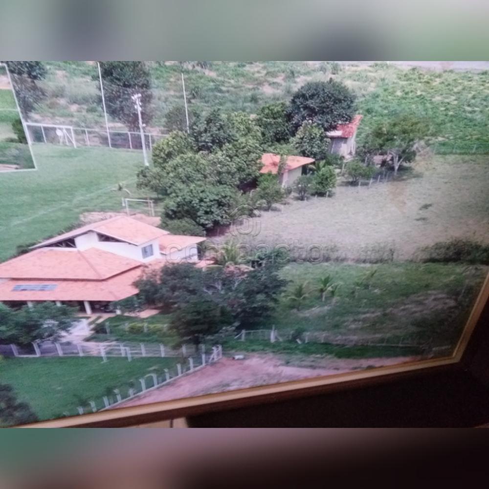 Comprar Rural / Chácara em Neves Paulista apenas R$ 900.000,00 - Foto 22