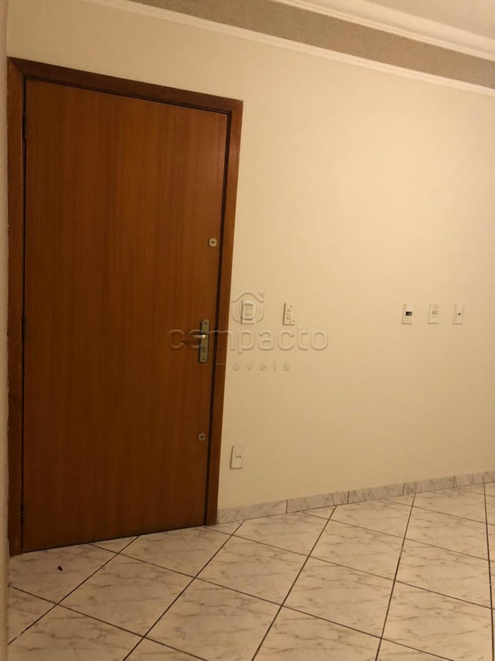 Comprar Casa / Padrão em Mirassol apenas R$ 275.000,00 - Foto 4