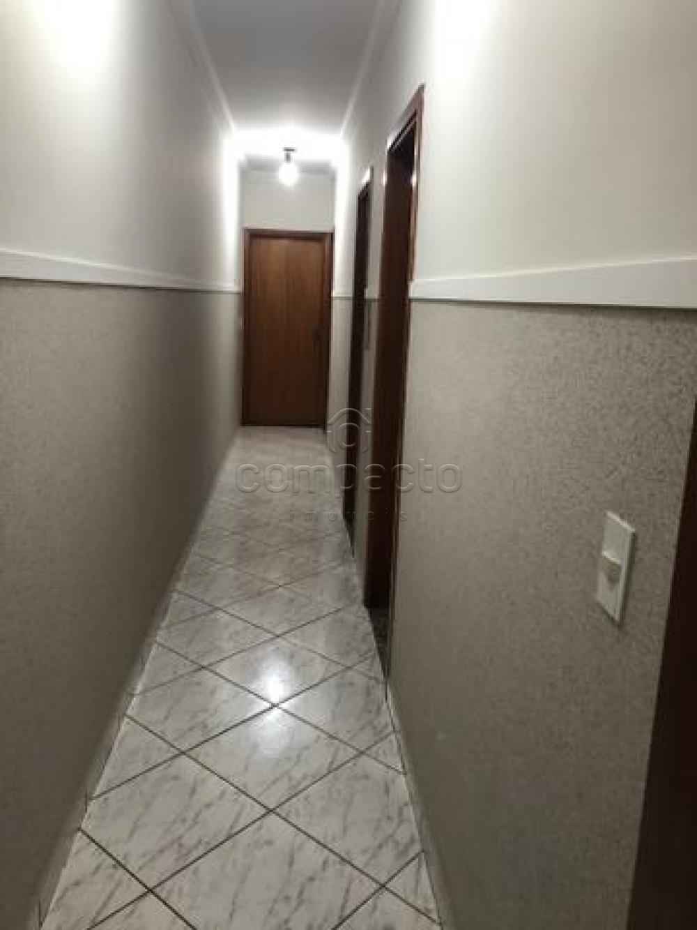 Comprar Casa / Padrão em Mirassol apenas R$ 275.000,00 - Foto 8