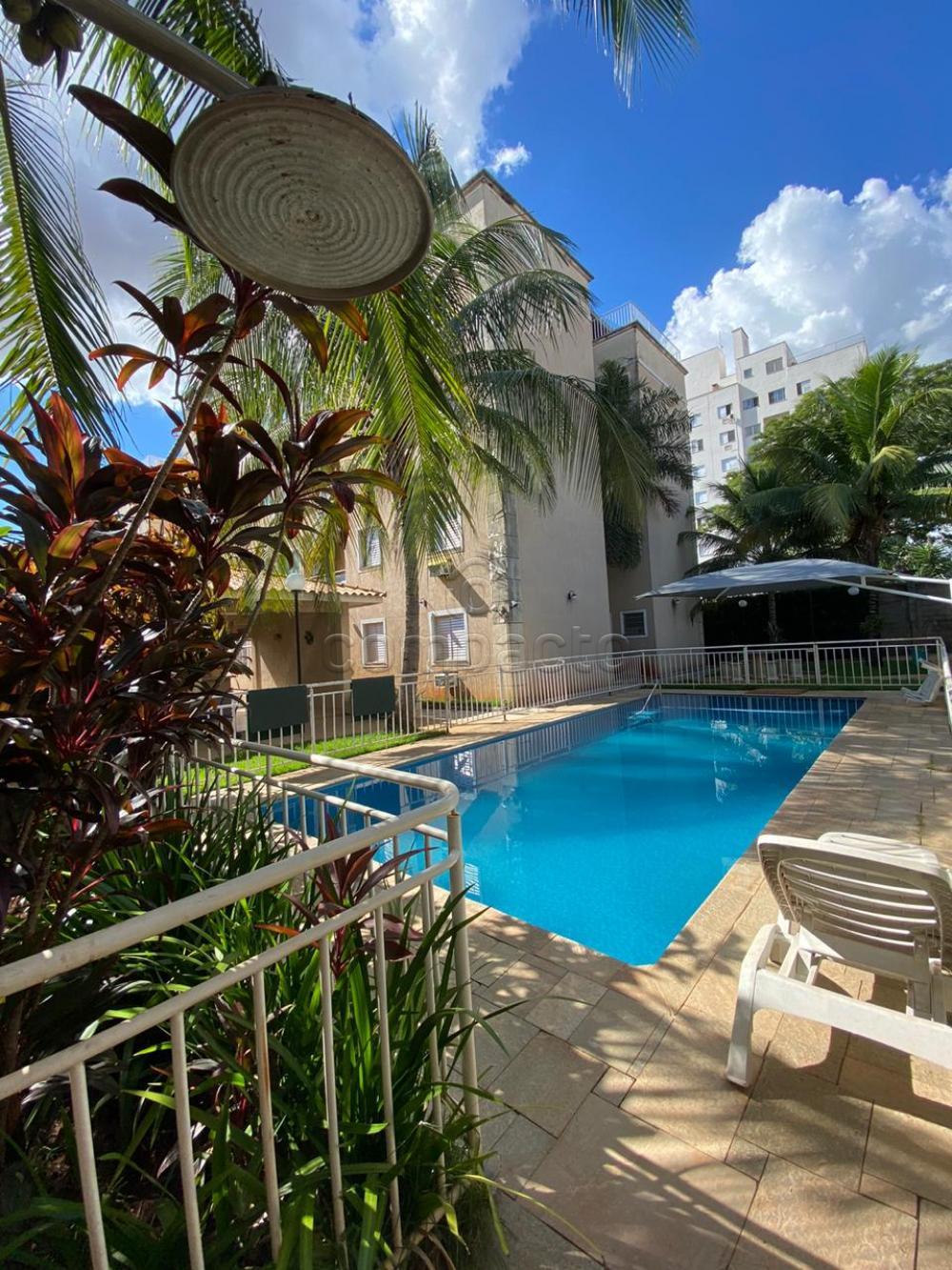 Alugar Apartamento / Padrão em São José do Rio Preto apenas R$ 1.250,00 - Foto 19