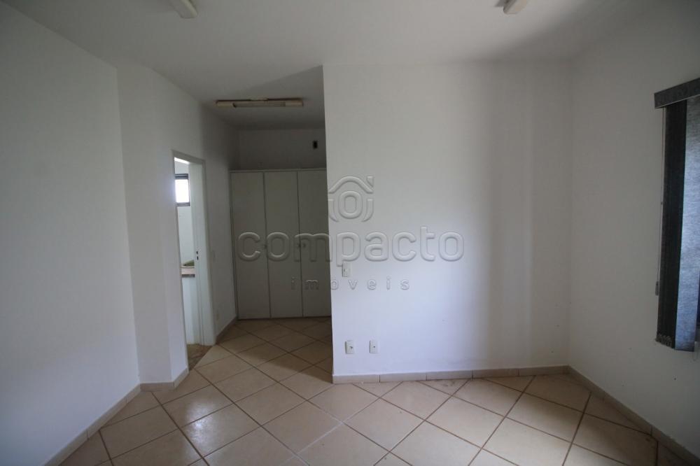 Alugar Comercial / Casa em São José do Rio Preto apenas R$ 4.500,00 - Foto 15
