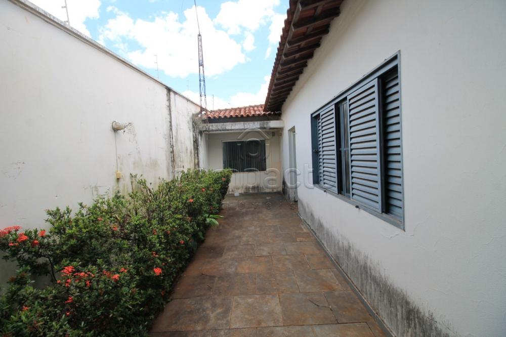 Alugar Comercial / Casa em São José do Rio Preto apenas R$ 4.500,00 - Foto 23