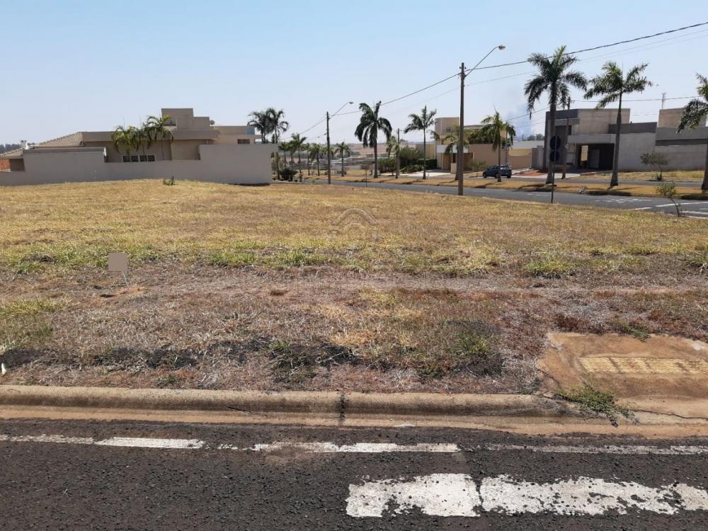 Comprar Terreno / Condomínio em Mirassol apenas R$ 125.000,00 - Foto 1