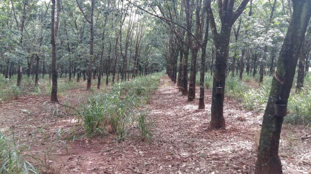 Comprar Terreno / Área em Frutal apenas R$ 3.600.000,00 - Foto 2