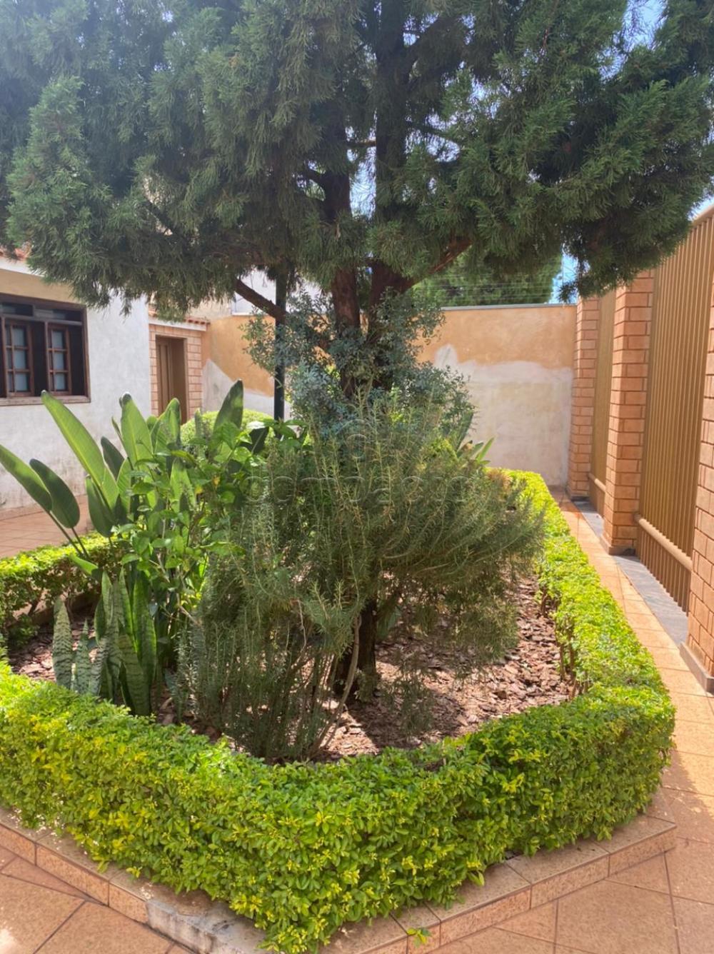 Comprar Casa / Padrão em São José do Rio Preto apenas R$ 1.200.000,00 - Foto 2