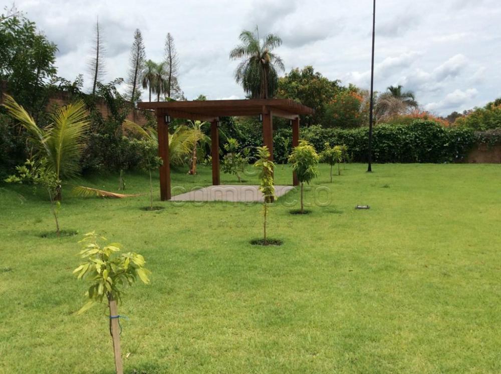 Comprar Casa / Condomínio em Mirassol apenas R$ 6.500.000,00 - Foto 4