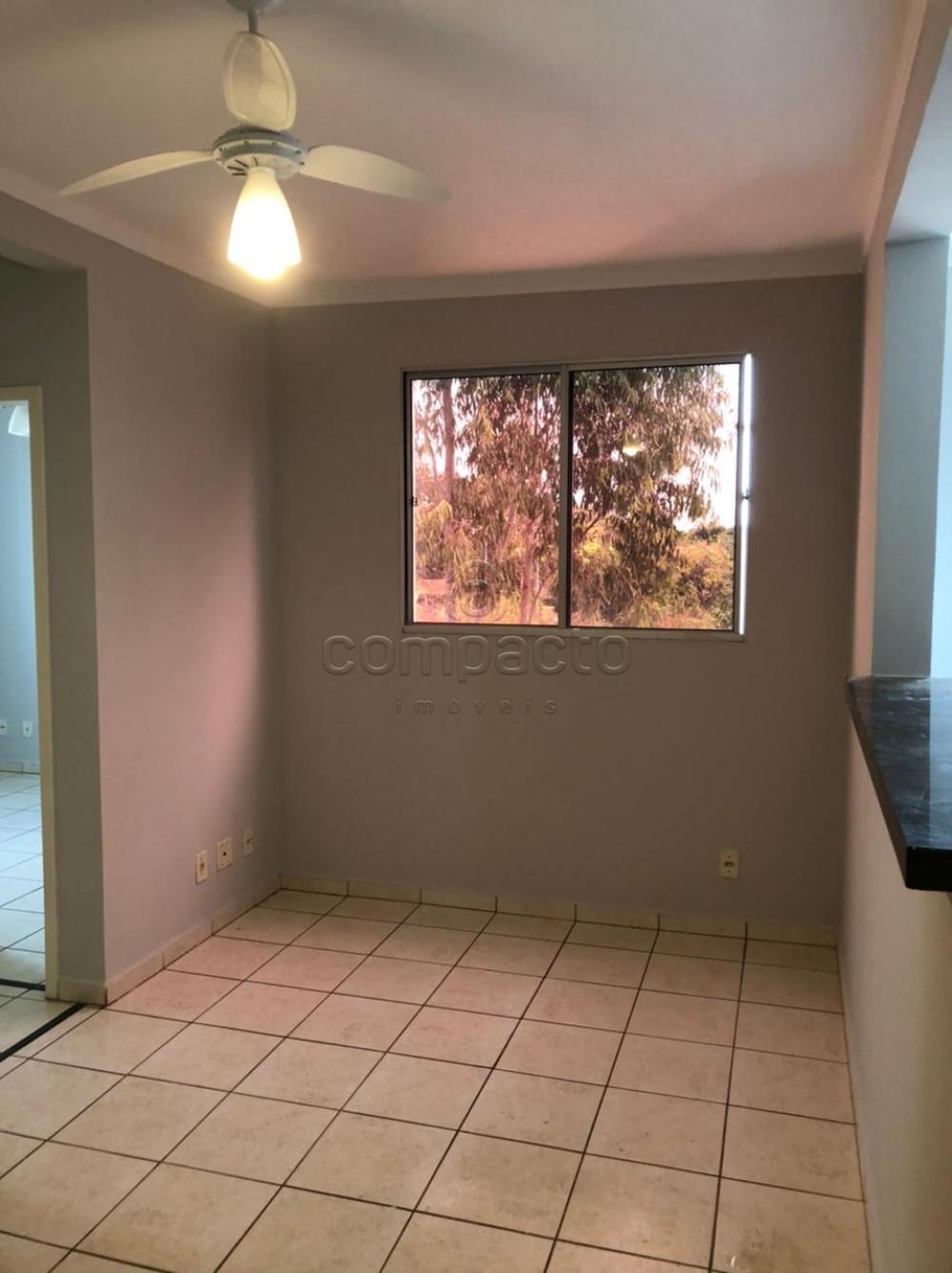 Alugar Apartamento / Padrão em São José do Rio Preto R$ 750,00 - Foto 1