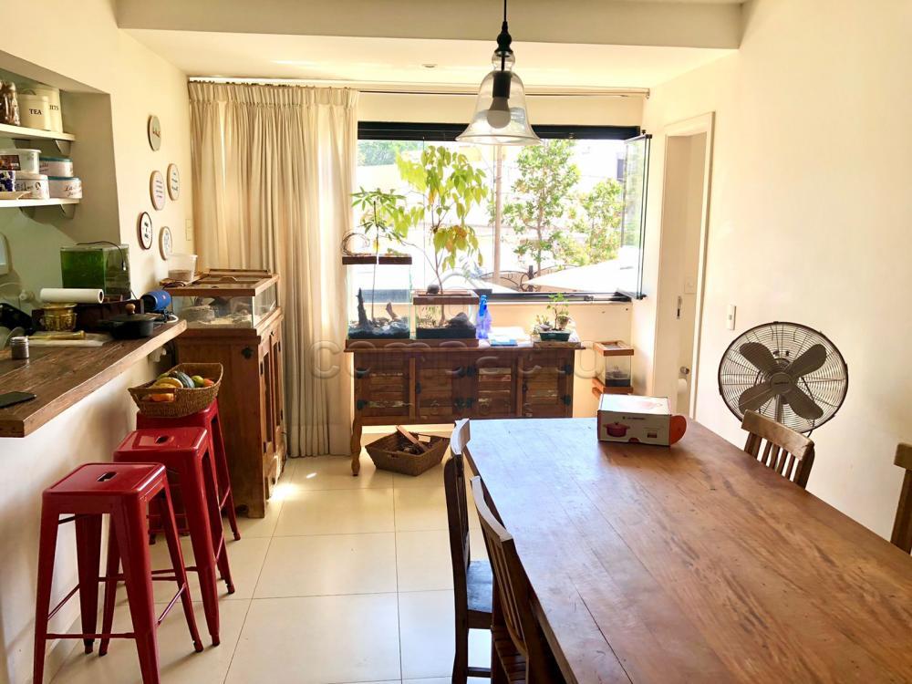 Comprar Apartamento / Padrão em São José do Rio Preto R$ 450.000,00 - Foto 3