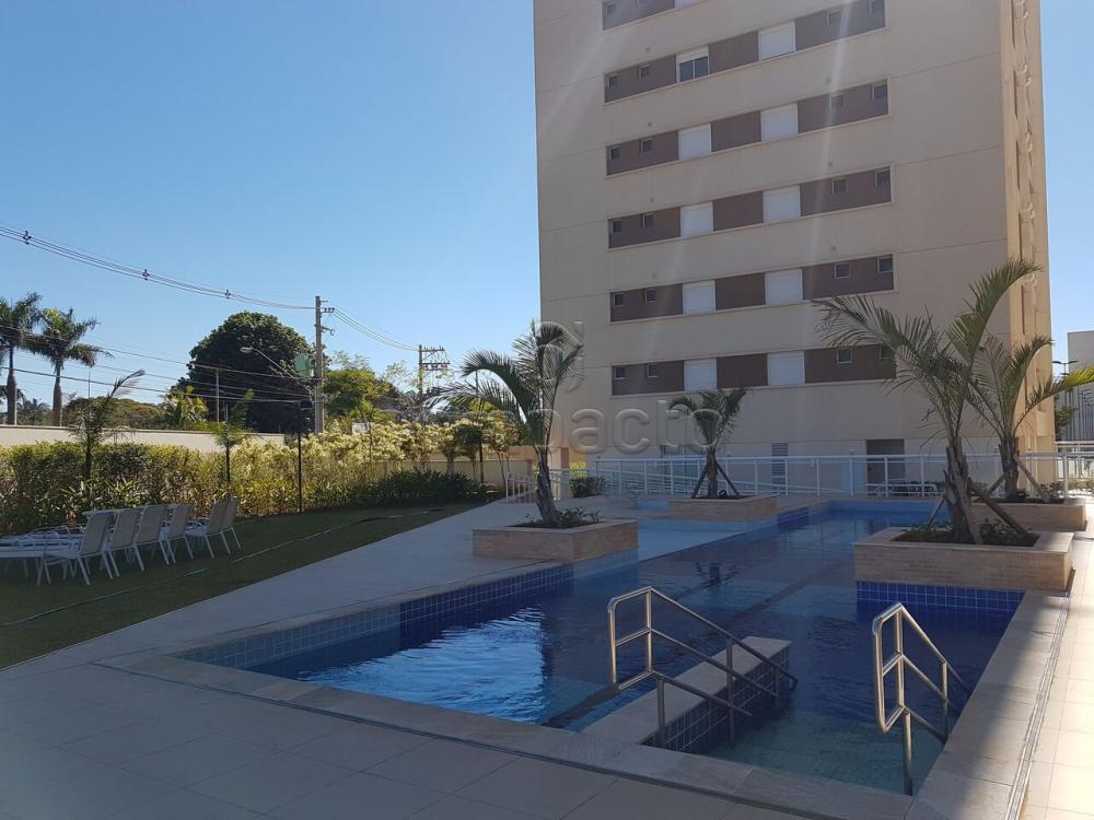 Comprar Apartamento / Padrão em São José do Rio Preto apenas R$ 800.000,00 - Foto 20
