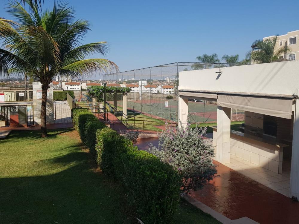 Alugar Apartamento / Padrão em São José do Rio Preto apenas R$ 720,00 - Foto 22