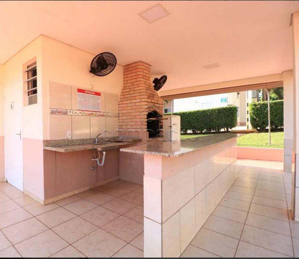 Alugar Apartamento / Padrão em São José do Rio Preto apenas R$ 720,00 - Foto 27