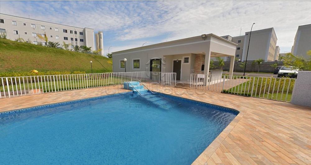 Comprar Apartamento / Padrão em São José do Rio Preto apenas R$ 190.000,00 - Foto 19