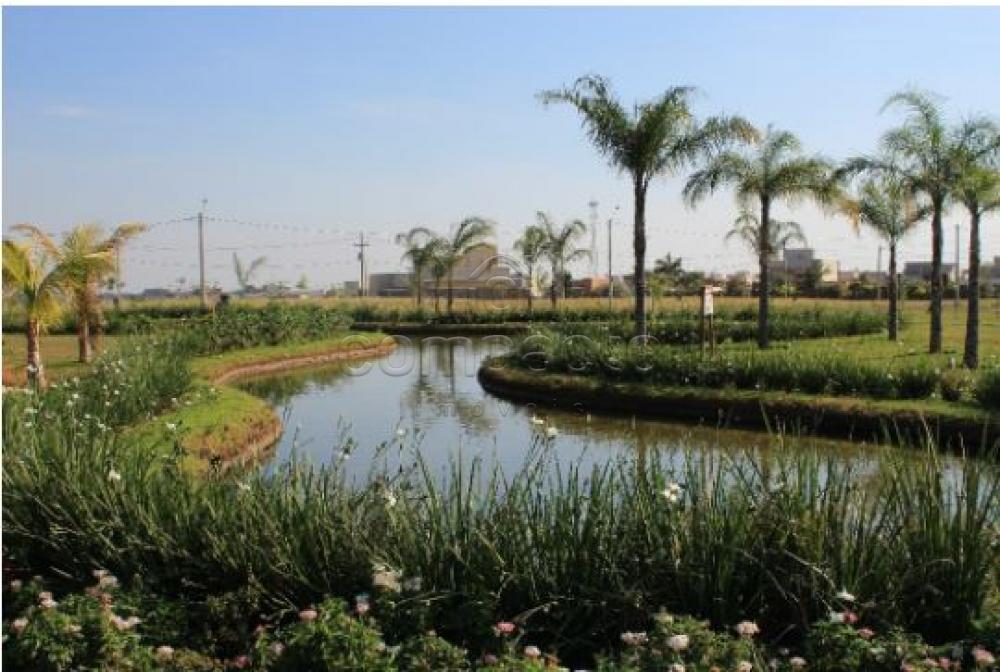 Comprar Terreno / Condomínio em Mirassol apenas R$ 130.000,00 - Foto 3