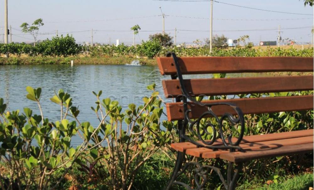 Comprar Terreno / Condomínio em Mirassol apenas R$ 130.000,00 - Foto 7
