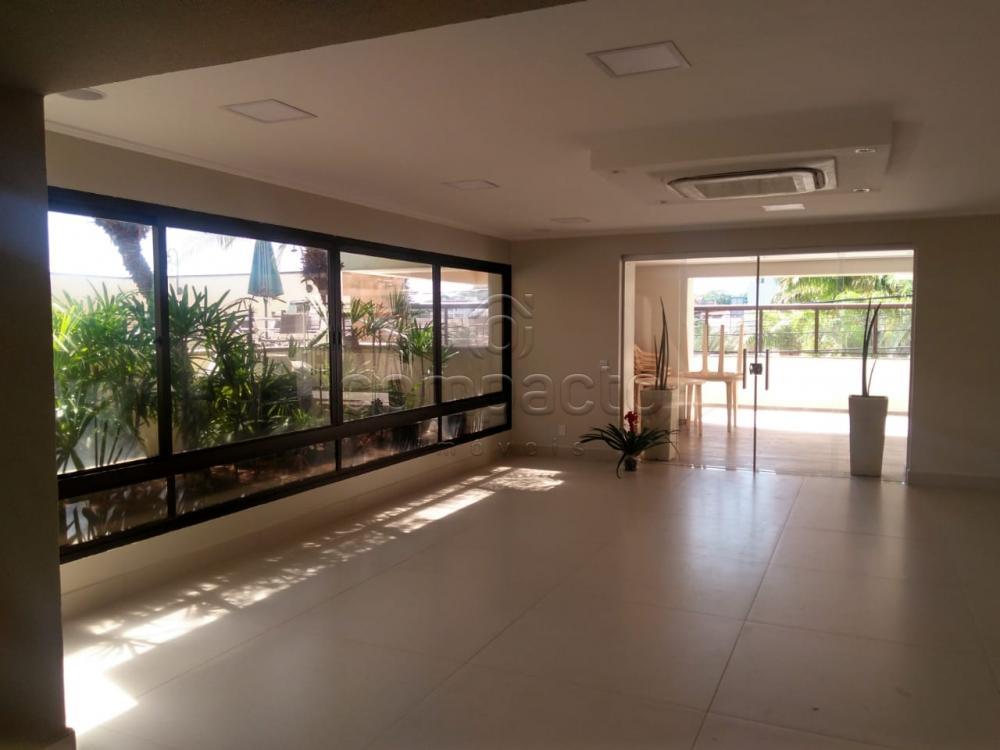Alugar Apartamento / Padrão em São José do Rio Preto R$ 2.000,00 - Foto 34