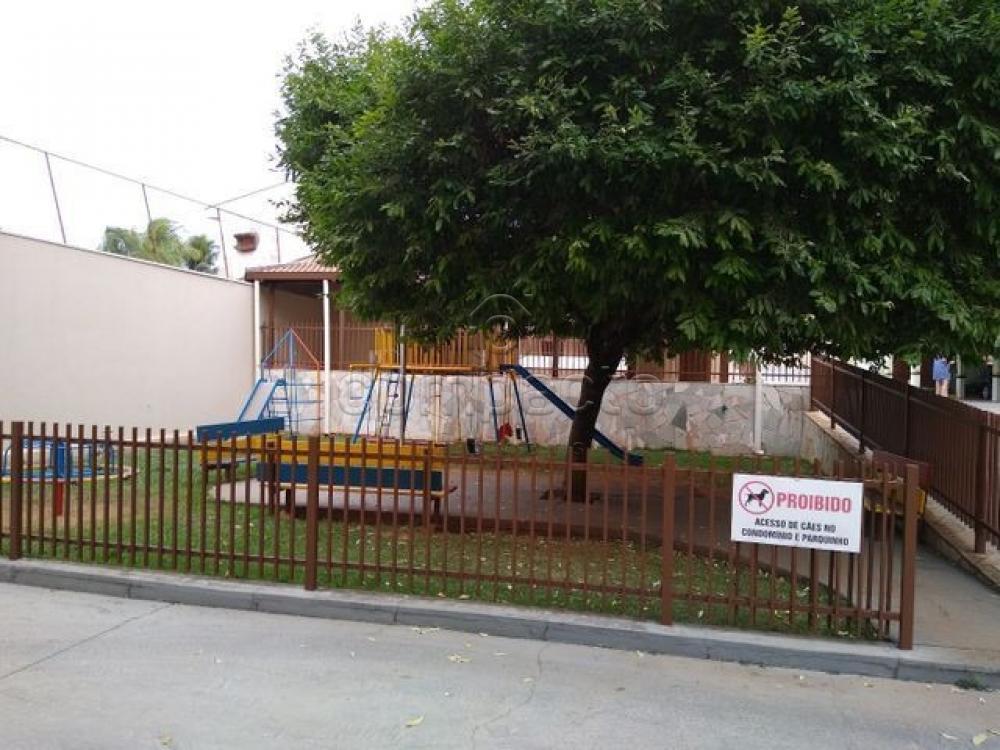 Alugar Apartamento / Padrão em São José do Rio Preto apenas R$ 1.000,00 - Foto 22
