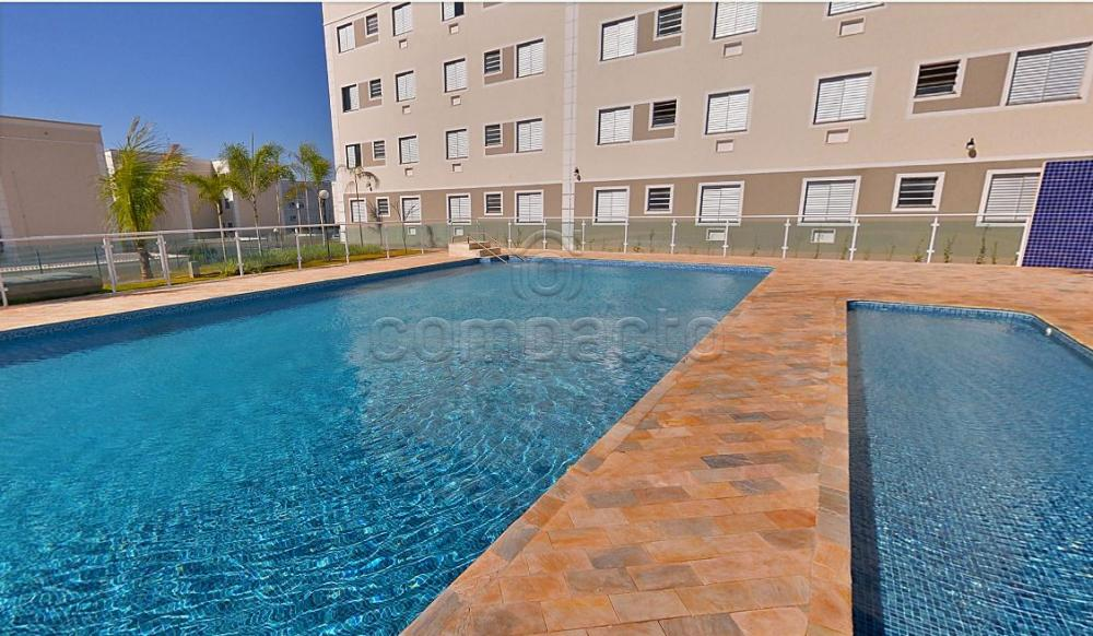 Alugar Apartamento / Padrão em São José do Rio Preto apenas R$ 1.150,00 - Foto 13