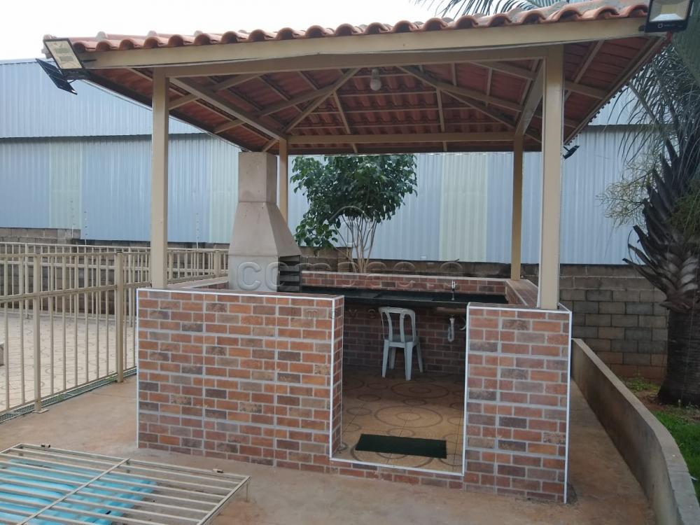 Alugar Apartamento / Padrão em São José do Rio Preto apenas R$ 600,00 - Foto 14