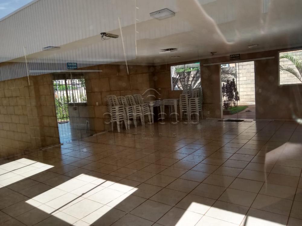 Alugar Apartamento / Padrão em São José do Rio Preto apenas R$ 600,00 - Foto 15