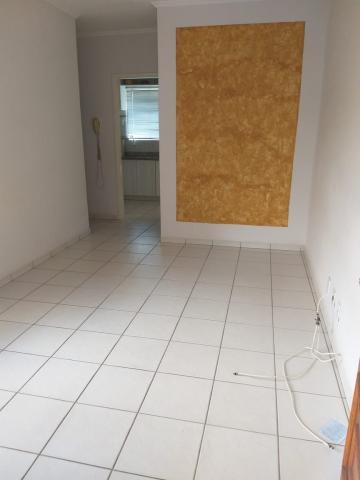 Alugar Apartamento / Padrão em São José do Rio Preto. apenas R$ 137.000,00