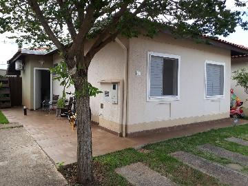 Alugar Casa / Condomínio em São José do Rio Preto. apenas R$ 340.000,00