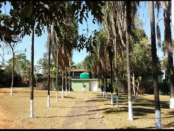 Sao Jose do Rio Preto Estancia Jockei Club Rural Venda R$5.000.000,00 14 Dormitorios  Area do terreno 12000.00m2