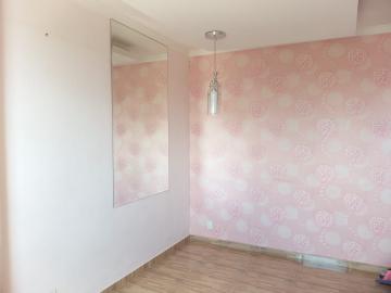 Alugar Apartamento / Padrão em São José do Rio Preto. apenas R$ 850,00