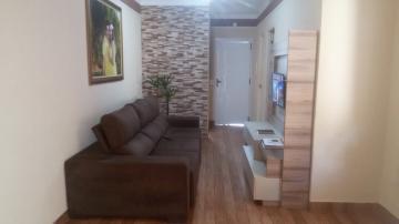 Alugar Casa / Condomínio em São José do Rio Preto. apenas R$ 240.000,00