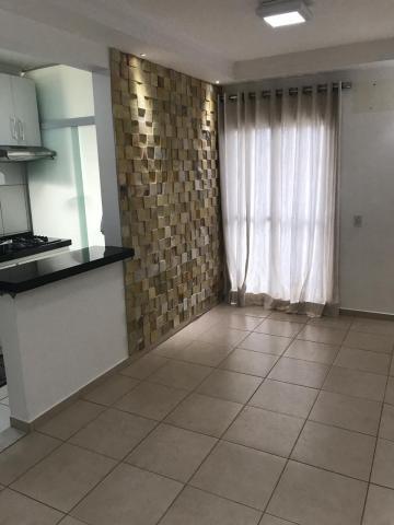 Alugar Apartamento / Padrão em São José do Rio Preto. apenas R$ 800,00