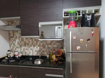 Alugar Casa / Condomínio em São José do Rio Preto. apenas R$ 220.000,00