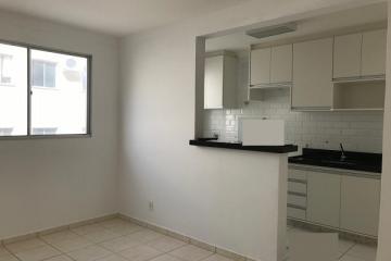 Alugar Apartamento / Padrão em São José do Rio Preto. apenas R$ 700,00