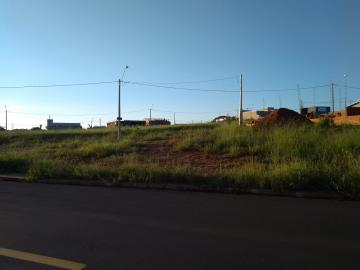 Terreno / Padrão em São José do Rio Preto , Comprar por R$90.000,00