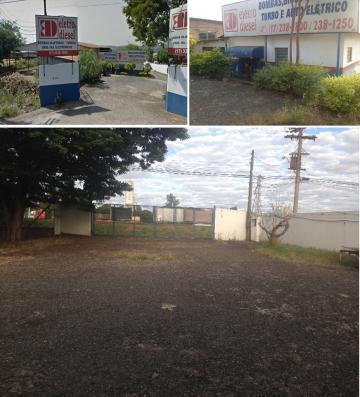 Sao Jose do Rio Preto Vila Toninho Imovel Locacao R$ 3.300,00 Area construida 175.00m2
