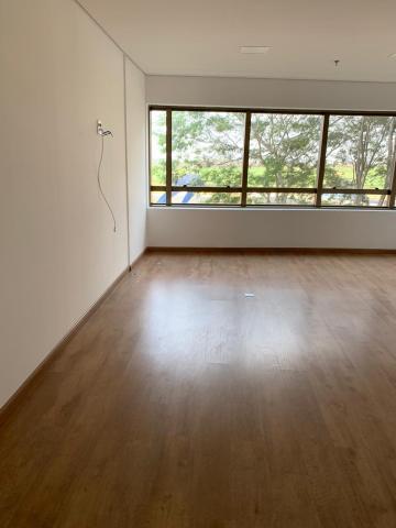 Alugar Comercial / Sala/Loja Condomínio em São José do Rio Preto. apenas R$ 1.600,00
