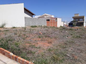Alugar Terreno / Padrão em São José do Rio Preto. apenas R$ 130.000,00