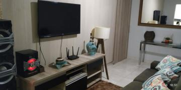 Alugar Apartamento / Cobertura em São José do Rio Preto. apenas R$ 250.000,00