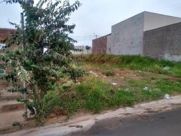 Terreno / Padrão em São José do Rio Preto , Comprar por R$105.000,00